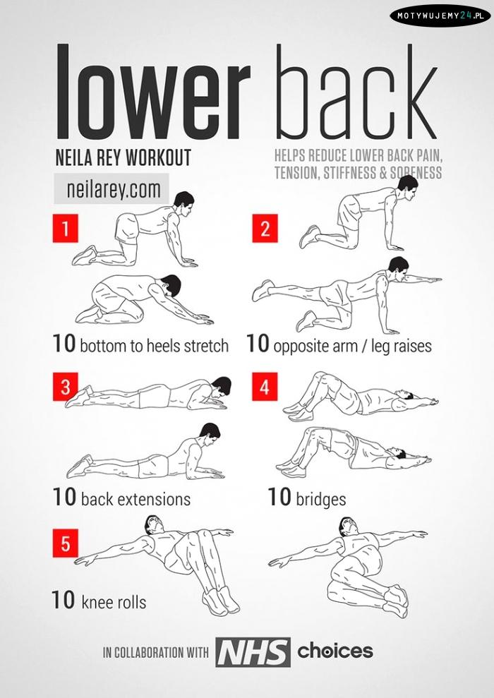 Lower back workout | Plecy