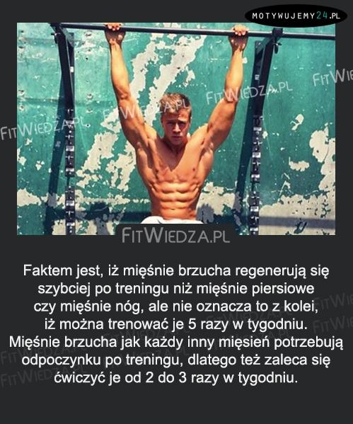 Faktem jest, iż mięśnie brzucha regenerują się...