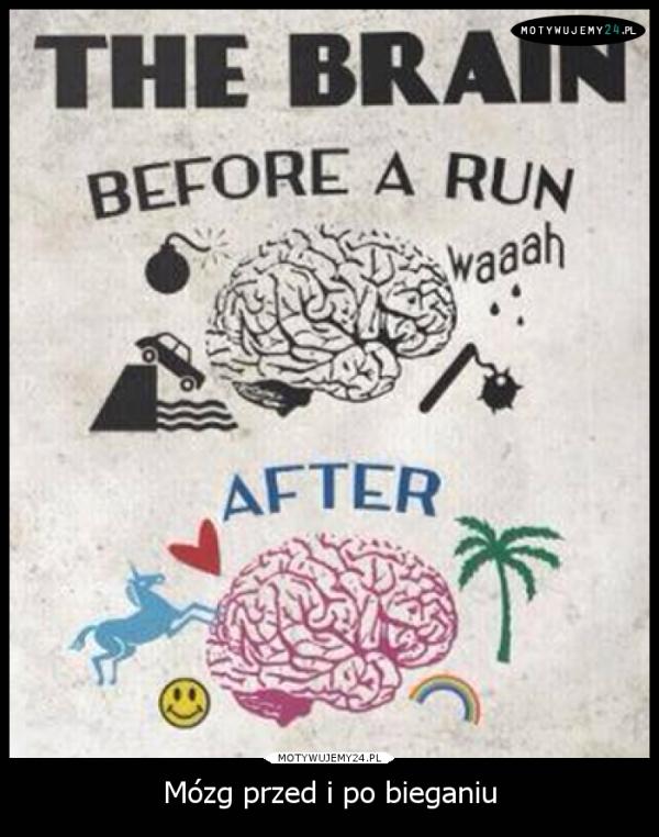 Mózg przed i po bieganiu