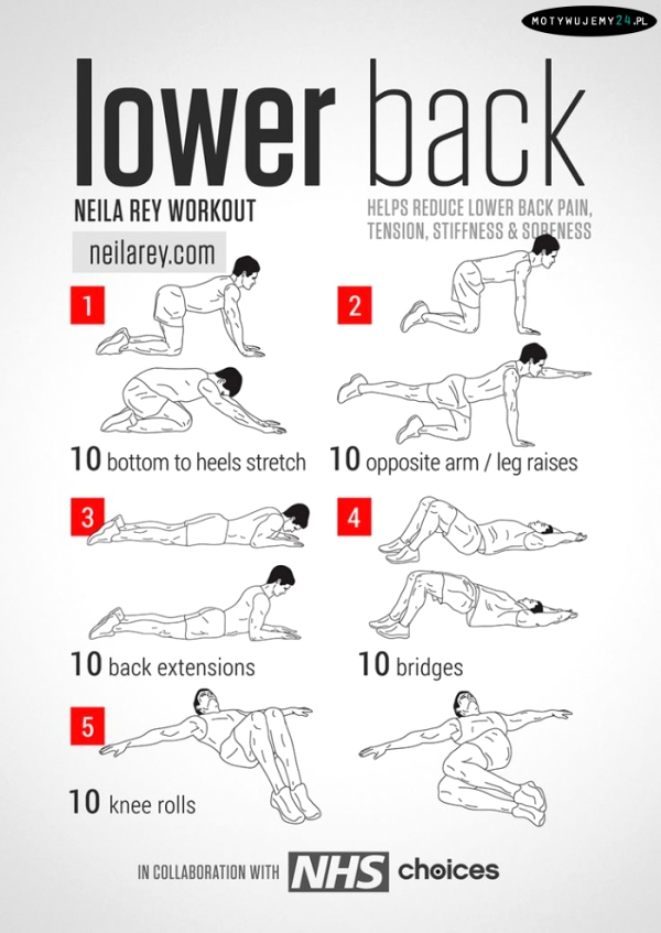 Lower back workout | Plecy