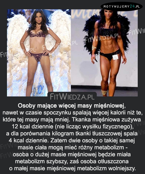 Osoby mające więcej masy mięśniowej...
