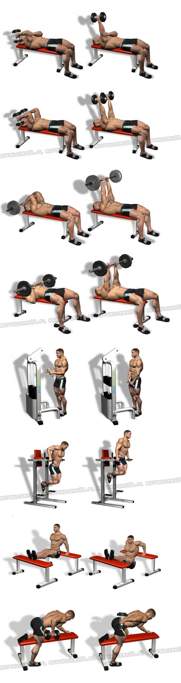 8 najlepszych ćwiczeń na triceps