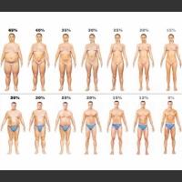 Wizualizacja % ilości tłuszczu w organizmie